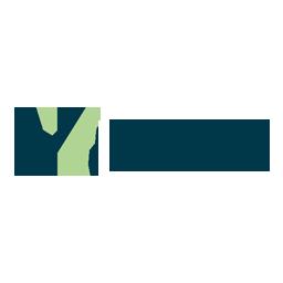 Viola-ventures
